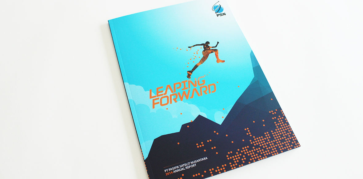 PSN Annual Report 2014